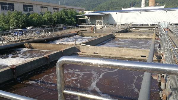 电子行业污水氨氮去除方法(图)