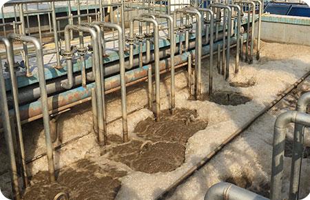 屠宰废水处理解决方案