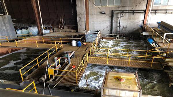污水处理厂除磷方法,应急(图)