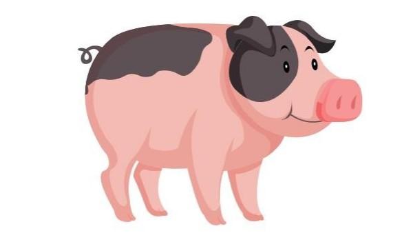 养猪场废水氨氮超标处理